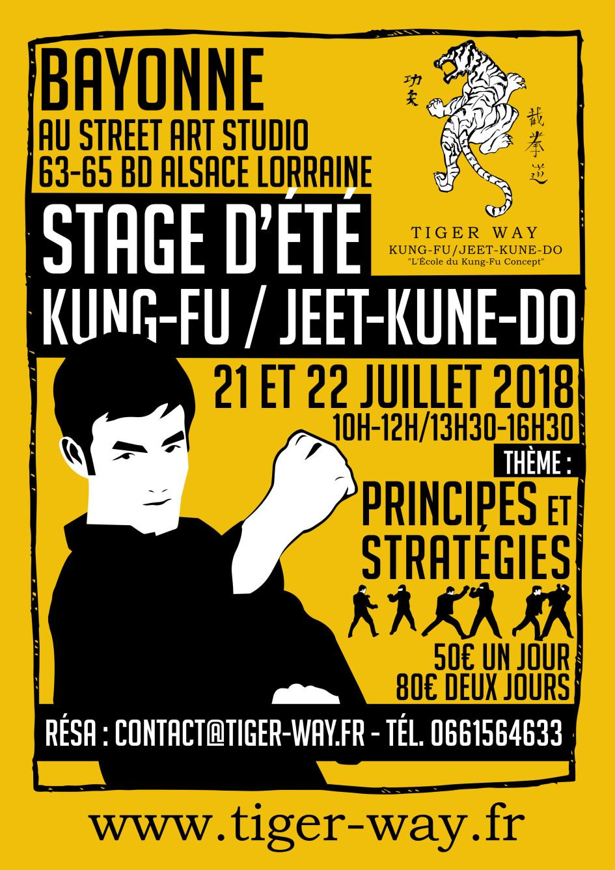 Stage kung-fu - jeet kune do ete 2018 - bayonne