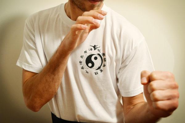 Tiger Way kung-fu 64 : Bayonne et Salies-de-Béarn