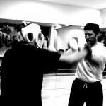 Stage intensif kung-fu - jeet-kune-do, Sud-Ouest, 64, Bayonne